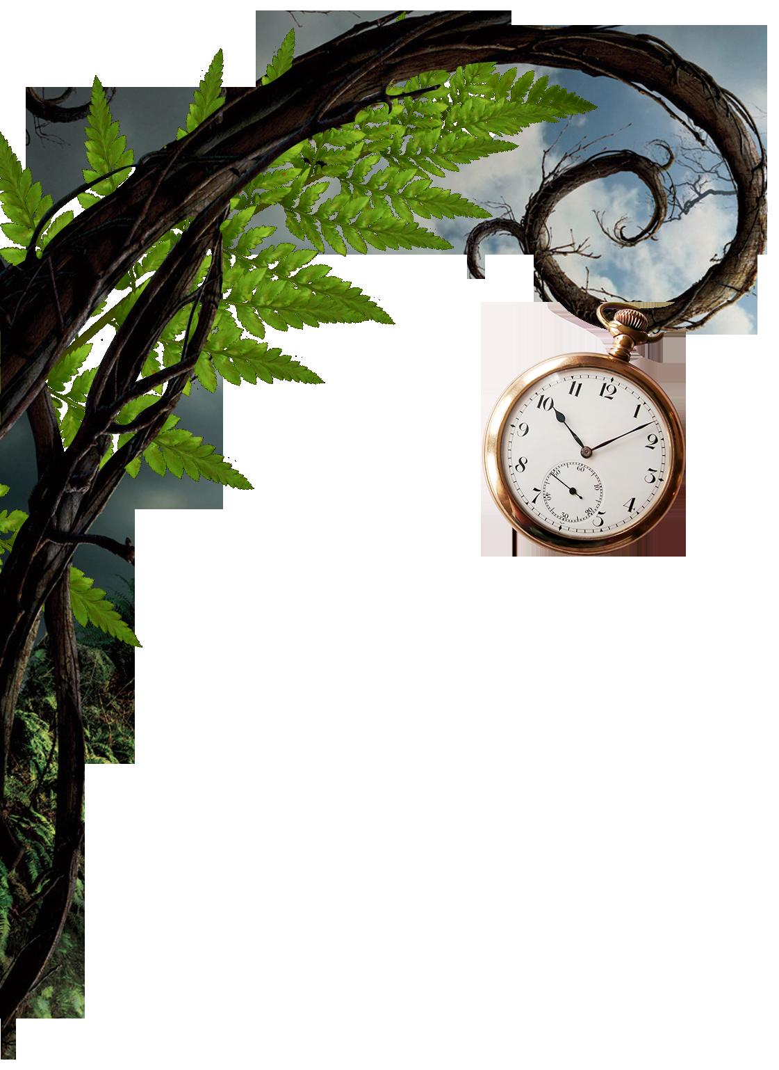 Wonderland-vine-and-watch